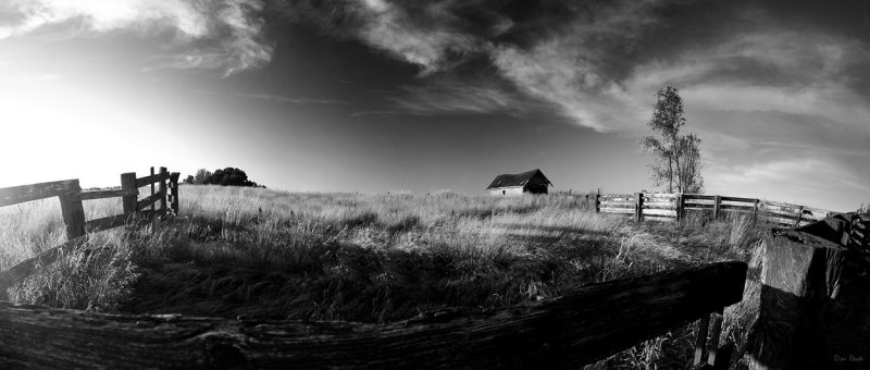 Black & White Composition of the Corral