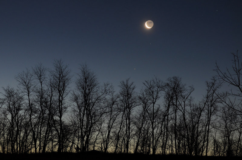 New Years Crescent Moon