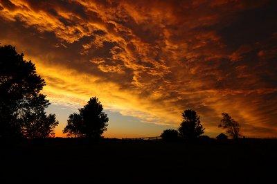Sky Filler Sunset