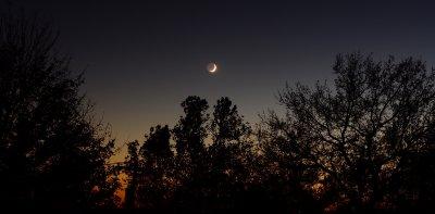 Crescent Nightfall