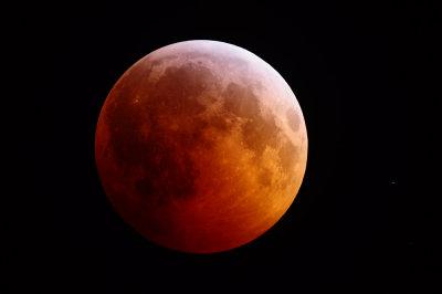 Solstice Lunar Eclipse