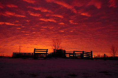 Evona Sunrise over Corral