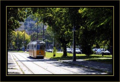 _DSC7724 framed.jpg