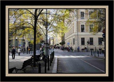 _DSC7385 framed.jpg