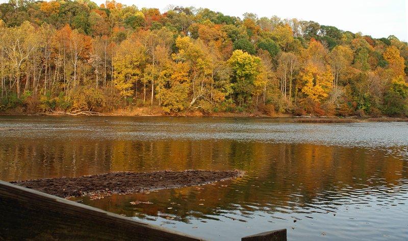 Rapp River Oct 2010.jpg