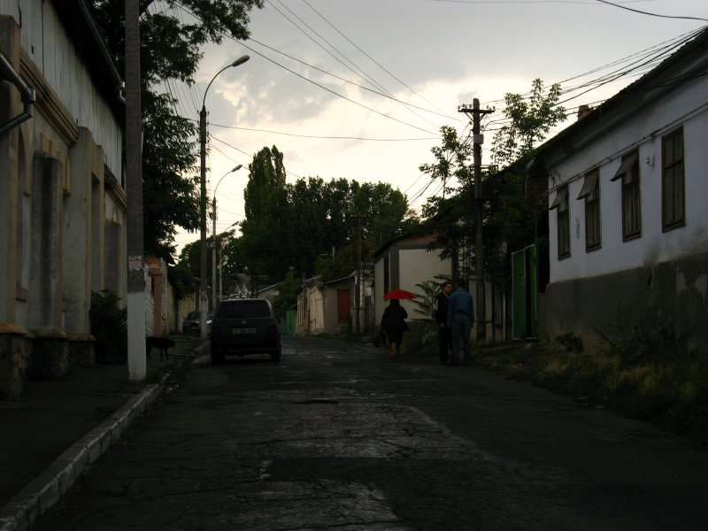 Gloomy light over a residential street