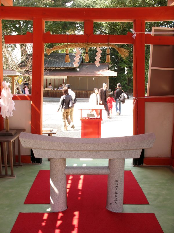 Sacred torii within the Ladies Shrine