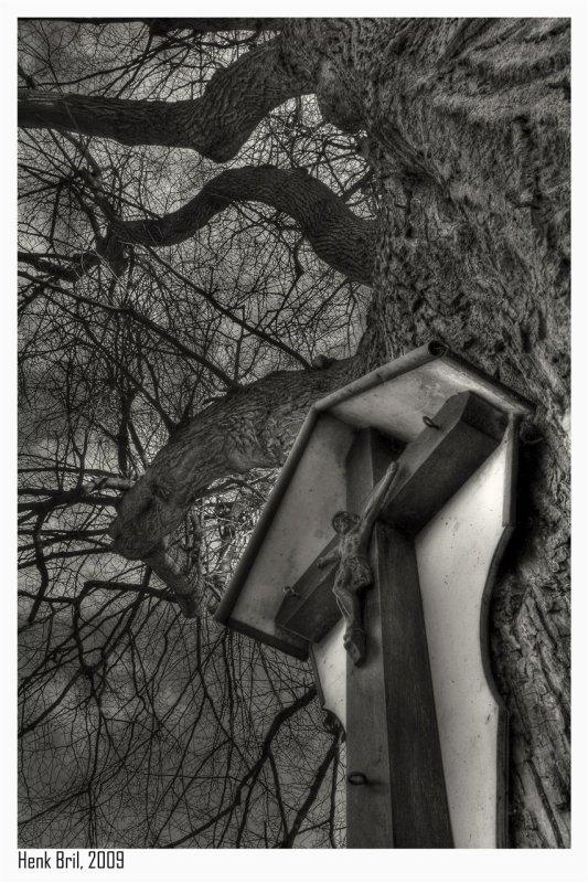 Cross at Oak