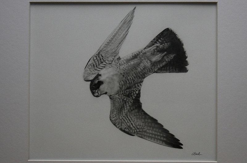 Graphite Art Work
