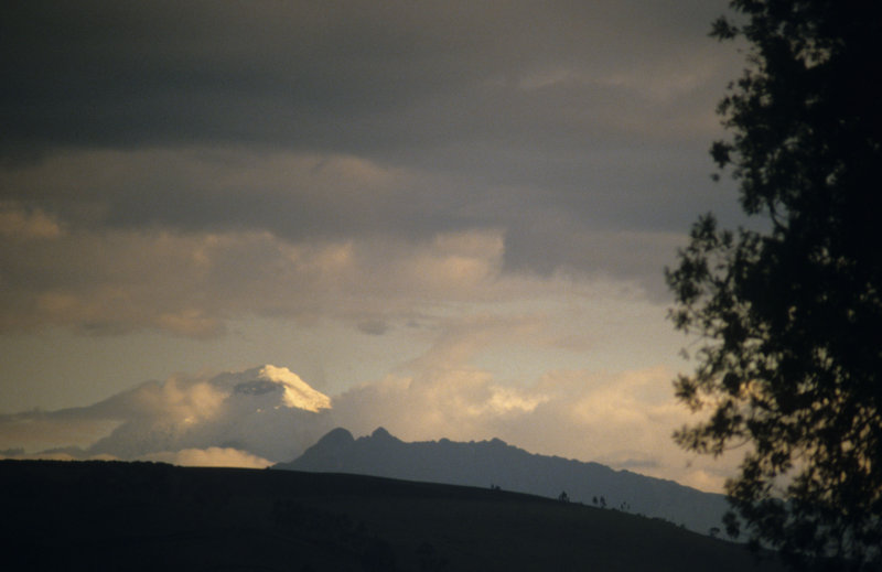 View on Cotopaxi