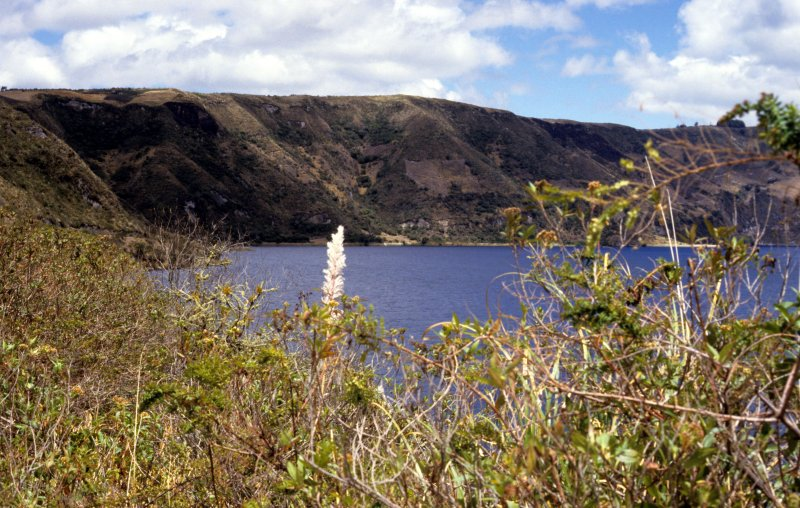 Crater-lake in  Cotacachi National Park