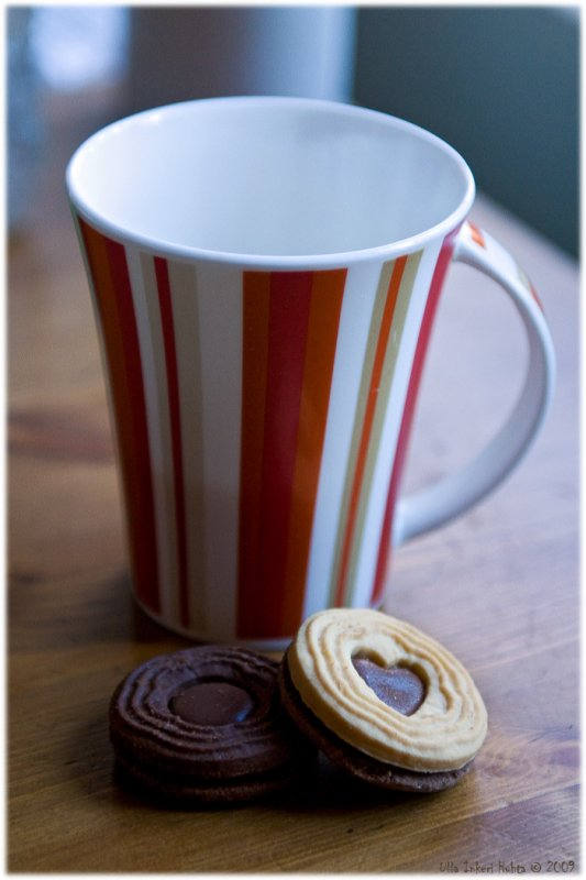Cuppa coffee and cookies after a nice sunny photowalk. Mmm...