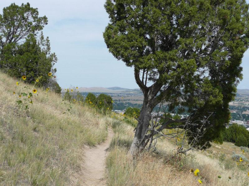 city creek area bike trail P1040172.jpg