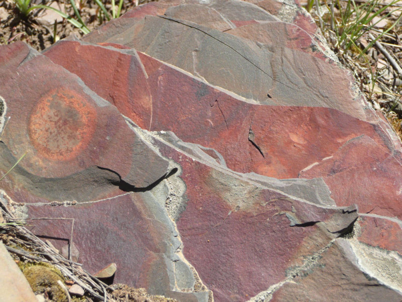 Colorful layered rock at Gibson Jack P1020630.jpg