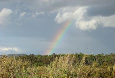 Countryside Rainbow - Ludo, Faro