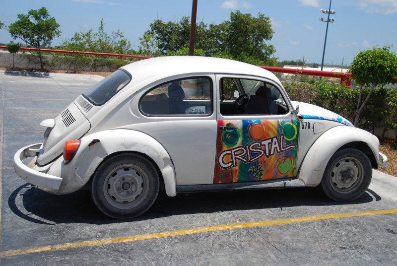 Beetle- Mexico