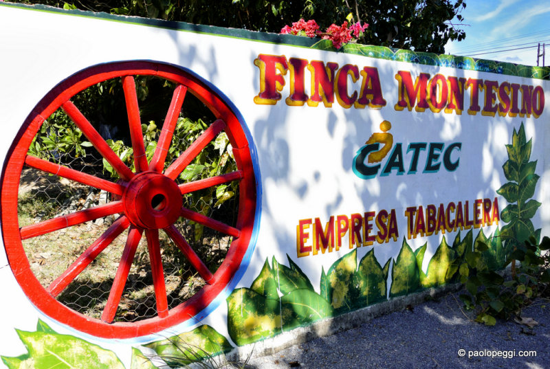 Finca Montesino Pinar del Rio,Cuba - Cultivation of tobacco and Cuban cigar factory