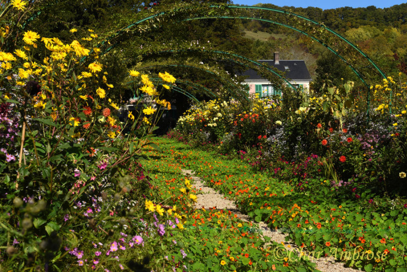 Monets Gardens in Giverny
