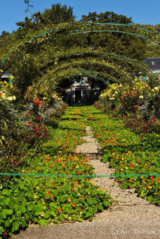 Monets Garden