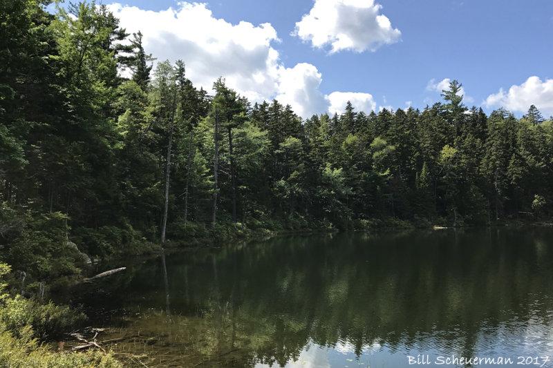 Kangamagus Hwy, NH