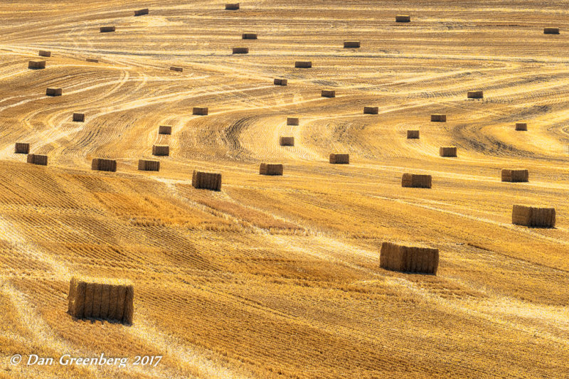 Advance of the Hay Bales