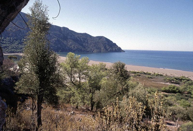 Dalyan view of eastern beach 1b.jpg