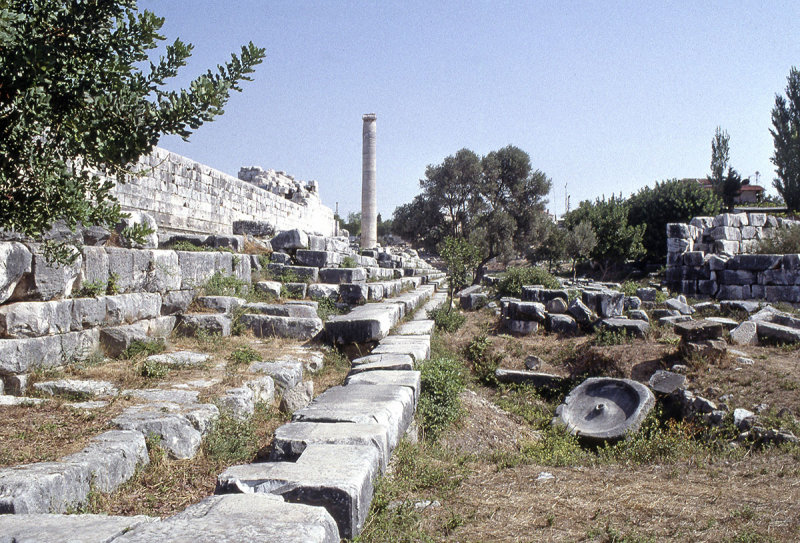Dydima Apollo temple South side 1