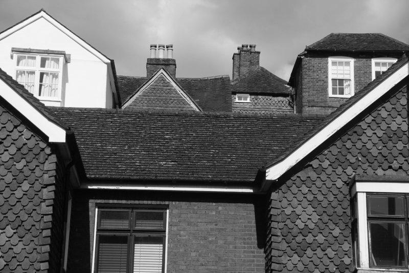 174:365<br>Rooflines in Guildford