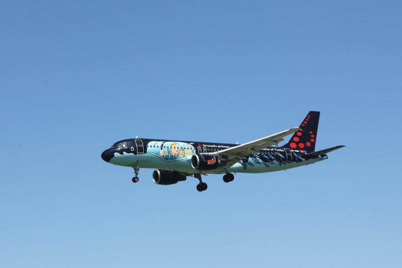 189:365<br>Tintin flies again