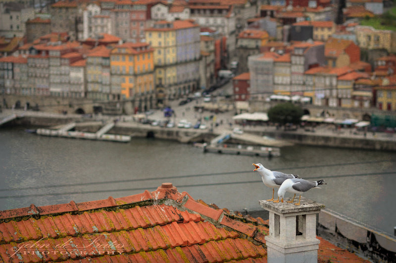 2018 - Porto - Portugal