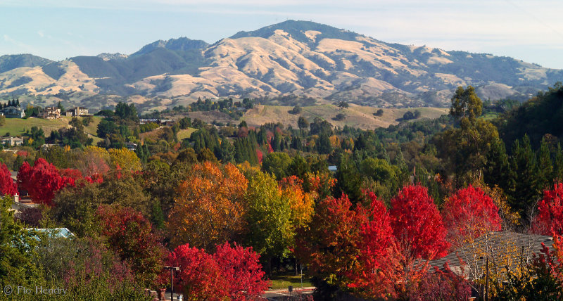 Fall View of Mt. Diablo