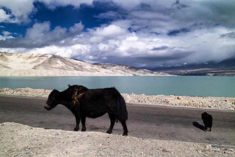 Baisha Lake 2