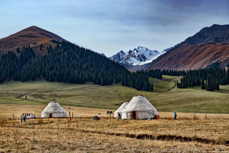 Nalati Grassland 1