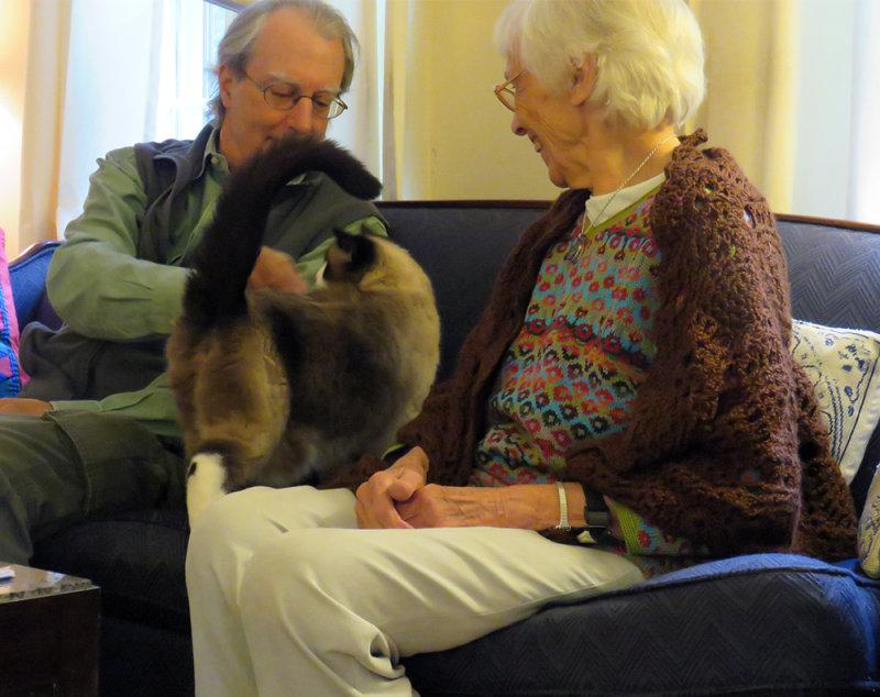 Peter Petting Lilicat and Martha