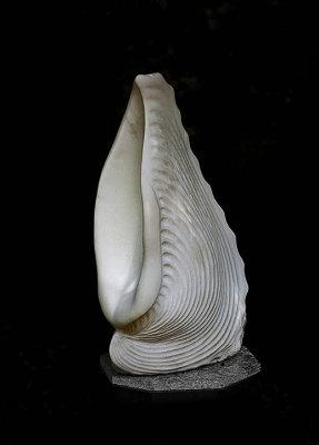 Conch shell - Mendocino Botanical Garden
