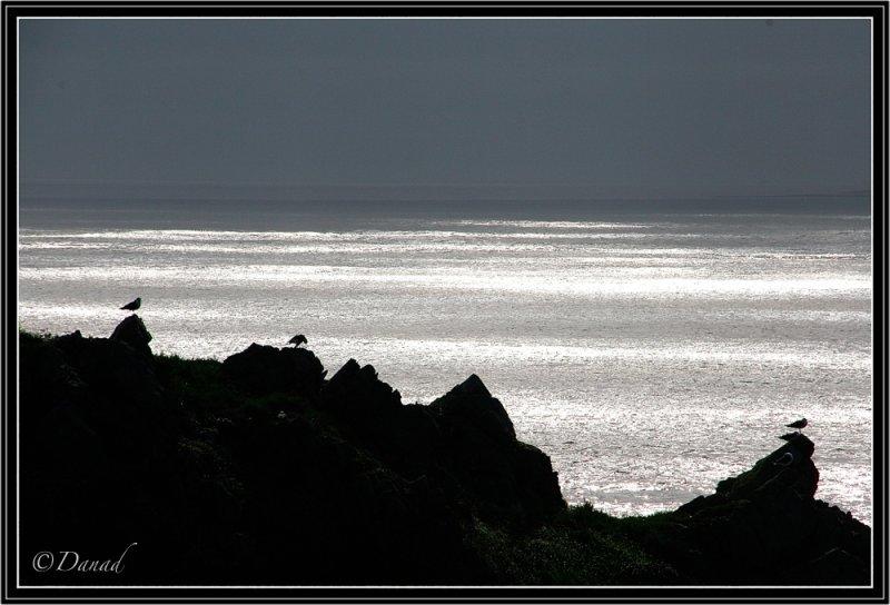 The Silver Sea.