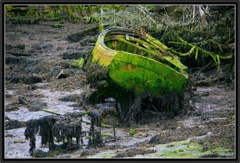 A Boat Resting on Foreshore.
