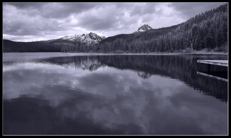 Somber Reflections