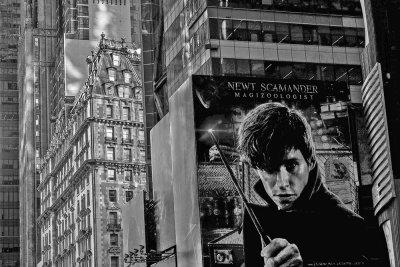 City of Dreams, New York, New York, 2016