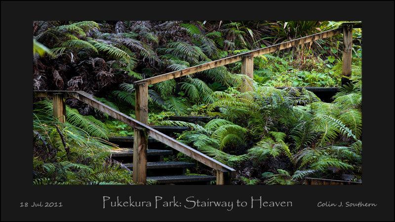 Pukekura Park - New Plymouth