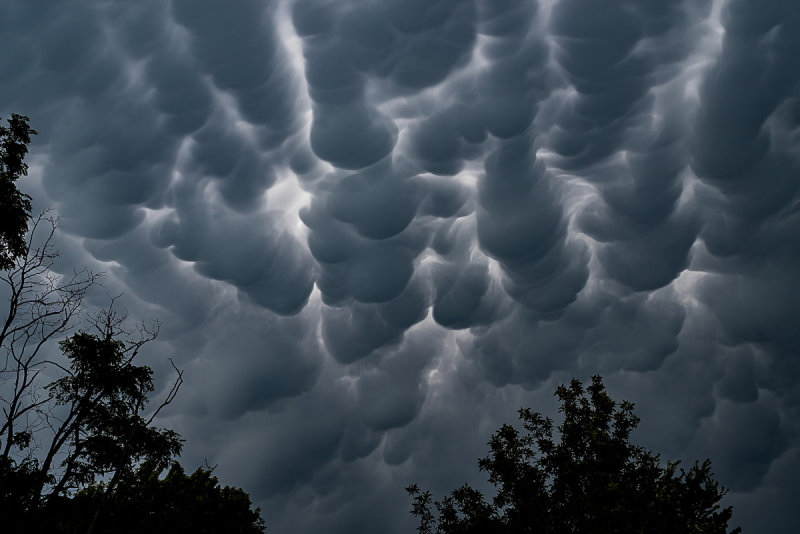 Mammatus Clouds Before the Storm