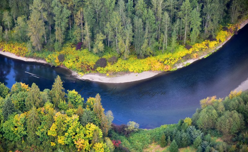 Fall along the Snoqualmie River Washington 173
