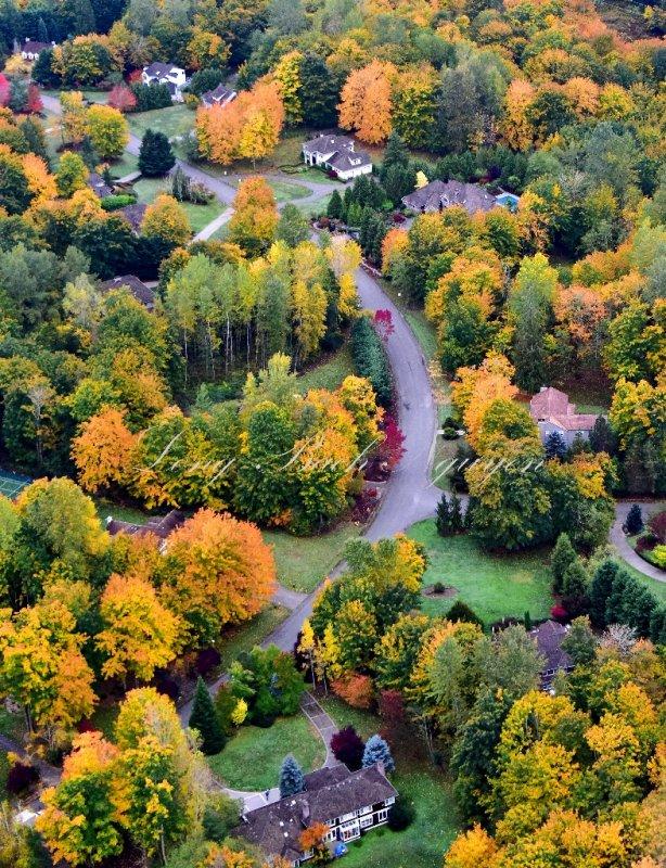 Brilliant Colors of Autumn in Washington State 127