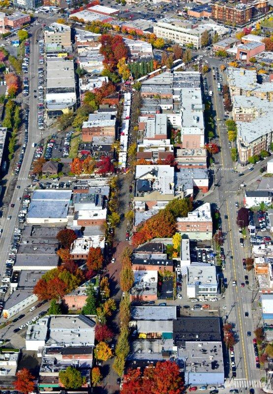 Fall foliage in Ballard neighborhood of Seattle 312