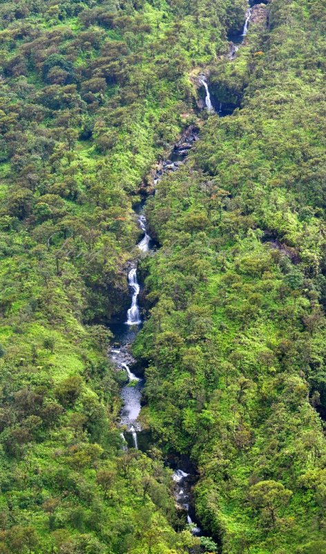 12 Waterfalls of Hanawi Stream, Maui, Hawaii 171