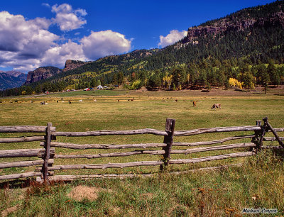 Pastoral scene near Wolf Creek Pass, Colorado