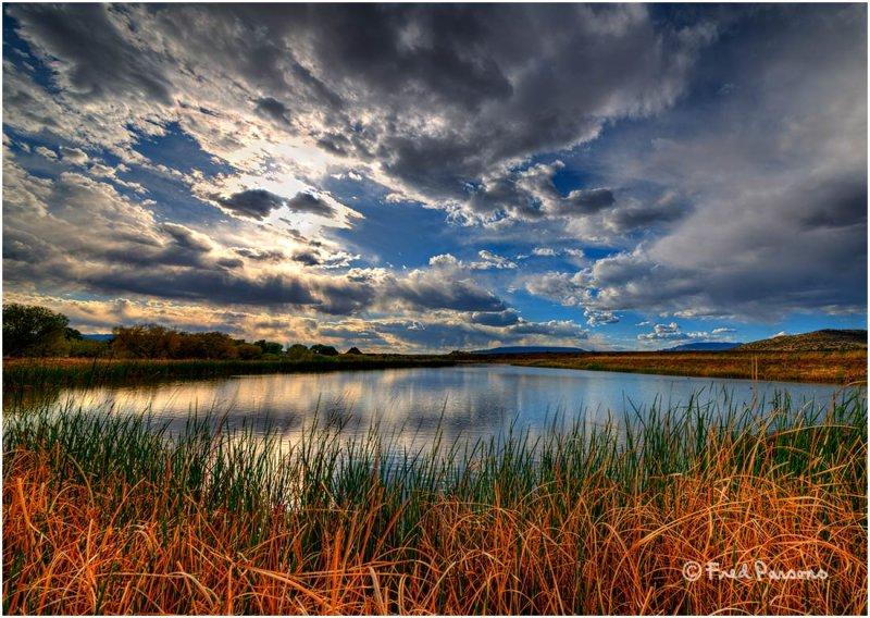 _DSC0638  Sedona Wetlands Project