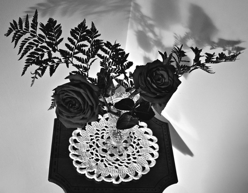 Roses in B&W