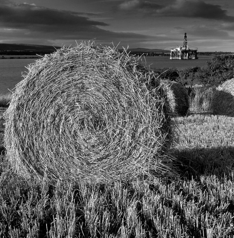 Bales Cromarty