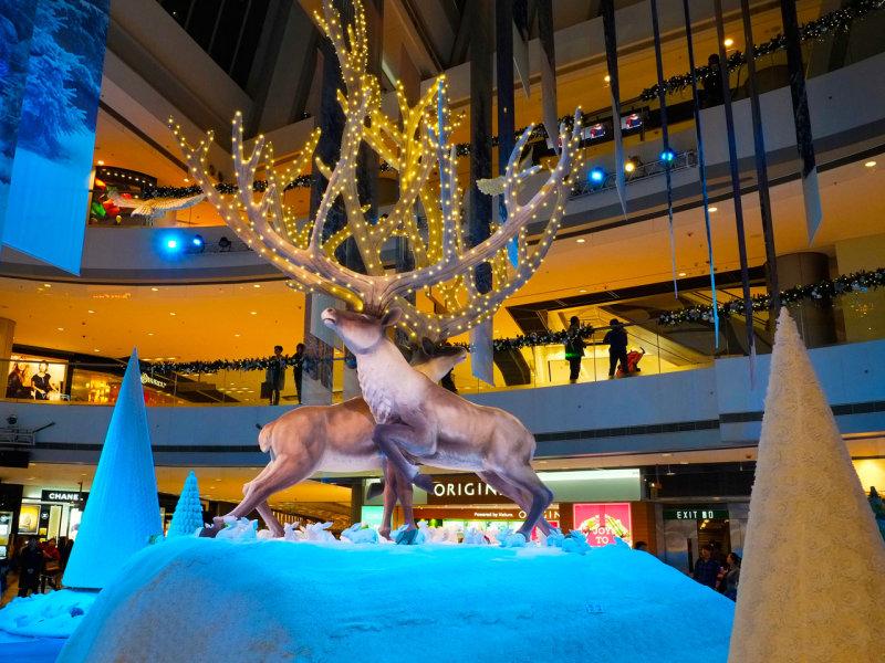 Christmas Reindeer (II)